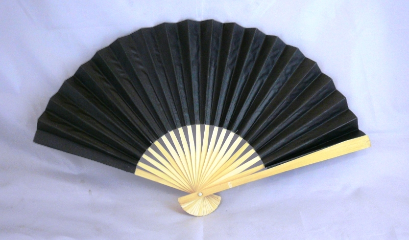 Plain Paper Fan (Black)