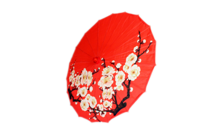 Medium Cherry Blossom Parasol - Red